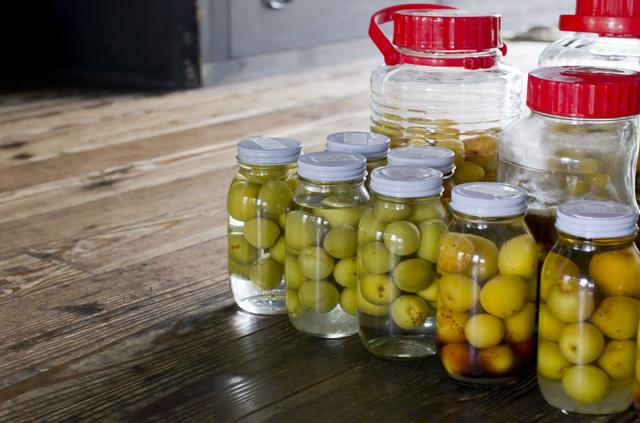 梅酢の簡単な初歩や基本的な使い方・利用方法・仕様方法・やり方