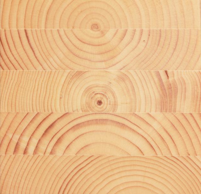 木固めエースの簡単な初歩や基本的な使い方・利用方法・仕様方法・やり方