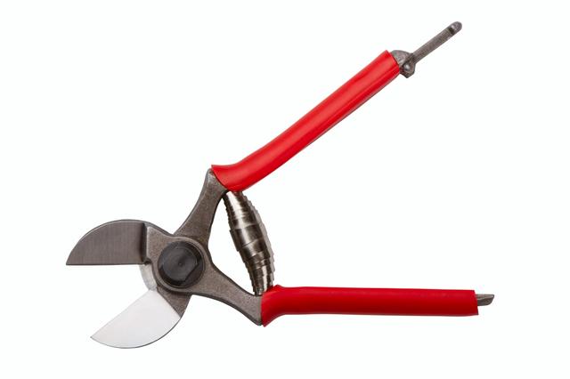 剪定ばさみの簡単な初歩や基本的な使い方・利用方法・仕様方法・やり方