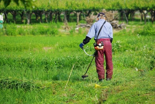 草刈り機の簡単な初歩や基本的な使い方・利用方法・仕様方法・やり方