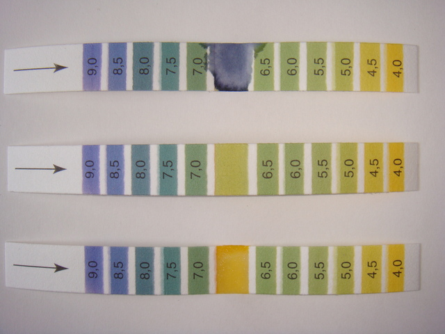 PH紙の簡単な初歩や基本的な使い方・利用方法・仕様方法・やり方