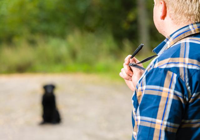 犬笛の簡単な初歩や基本的な使い方・利用方法・仕様方法・やり方