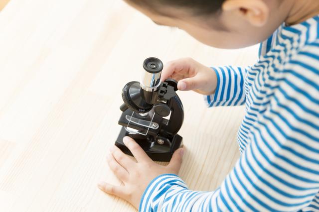 顕微鏡小学校の簡単な初歩や基本的な使い方・利用方法・仕様方法・やり方